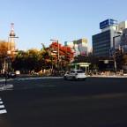 北海道はもう紅葉